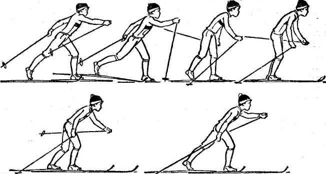 Лыжная подготовка  Лыжная подготовка